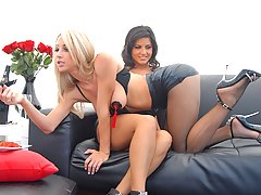 Beautiful hot fucking lesbo babes get their boxes rammed in these hot screaming picset update